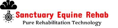 Sanctuary Equine Rehab – Pure Rehabilitation Technology